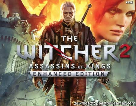 The Witcher 2 Assassins of Kings Game PC